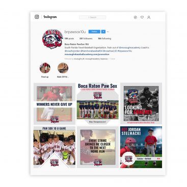 Paw Sox INstagram Social Media Feed Design